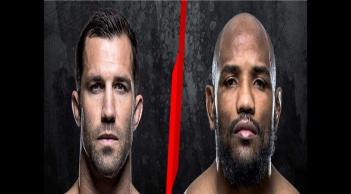 UFC Middleweight Division