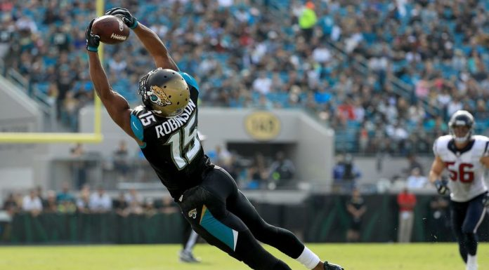 Bears Sign Allen Robinson
